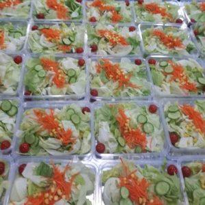 salad سالاد فصل